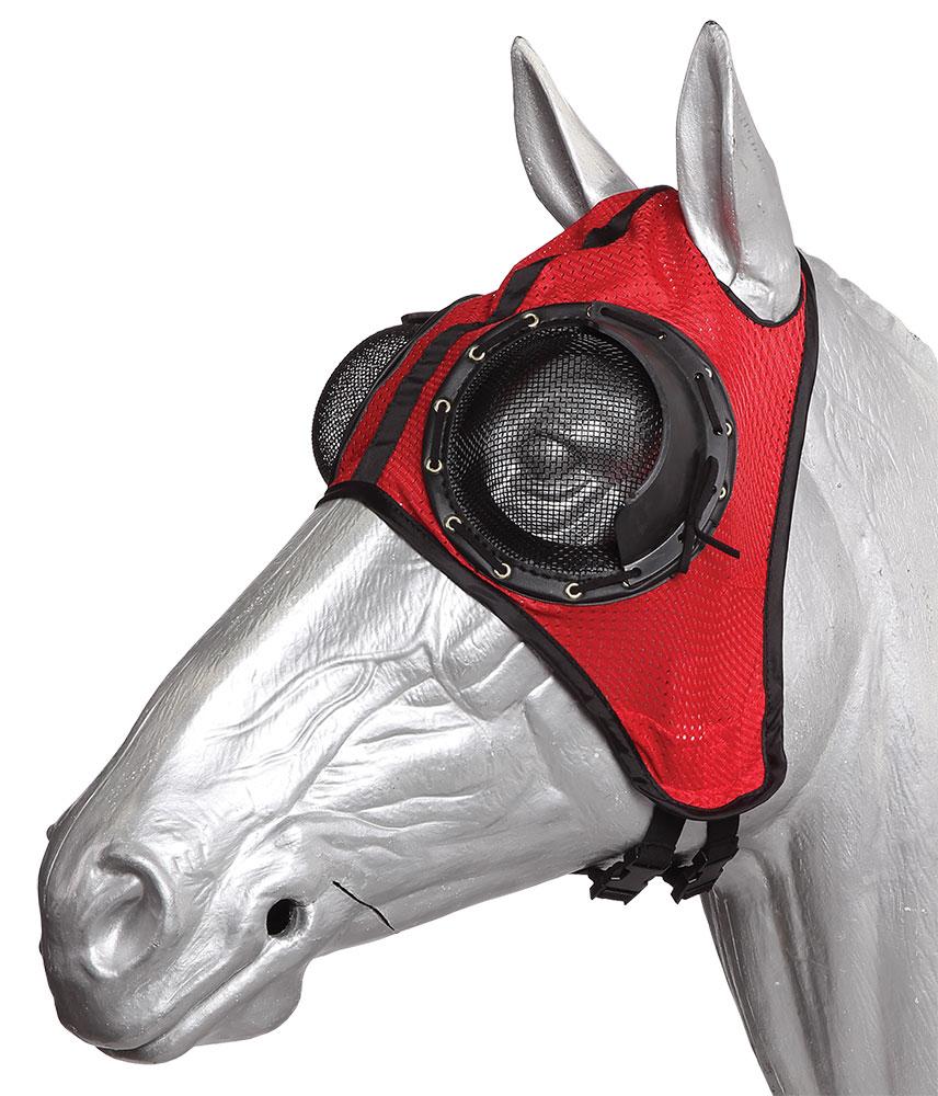 Blinkers horse tack  Wikipedia